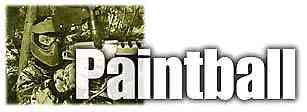 paintpaint4.jpg